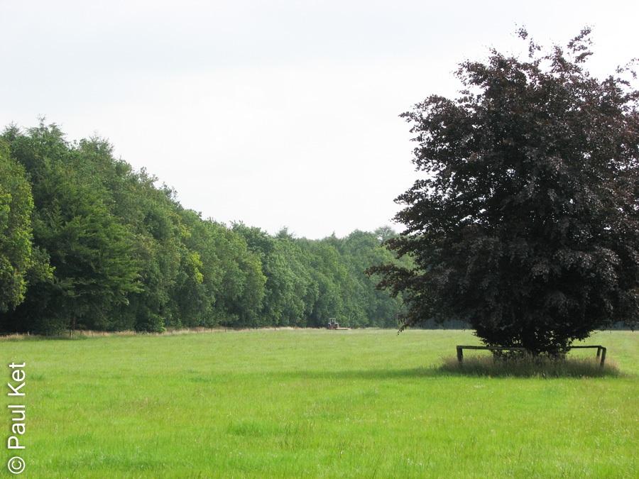 "Taken at Latitude/Longitude:52.487036/6.184651. 0.94 km East Wijthmen Overijssel Netherlands <a href=""http://www.geonames.org/maps/google_52.487036_6.184651.html""> (Map link)</a>"