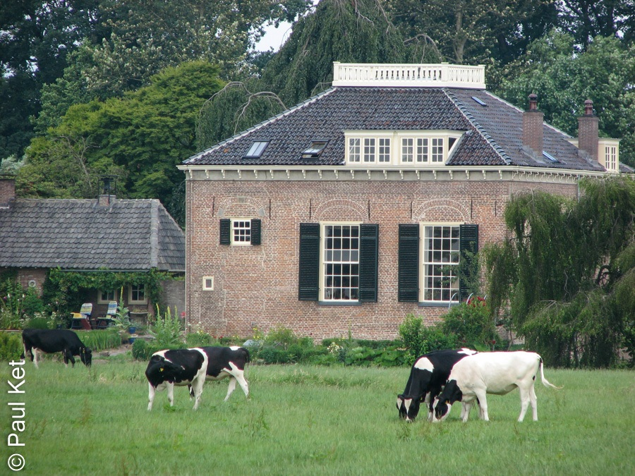 "Taken at Latitude/Longitude:52.563699/6.109956. 0.56 km West Genne Overijssel Netherlands <a href=""http://www.geonames.org/maps/google_52.563699_6.109956.html""> (Map link)</a>"