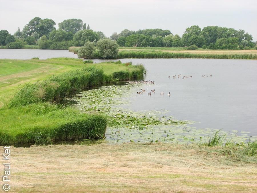 "Taken at Latitude/Longitude:52.585919/6.100877. 0.84 km South-East Hasselt Overijssel Netherlands <a href=""http://www.geonames.org/maps/google_52.585919_6.100877.html""> (Map link)</a>"