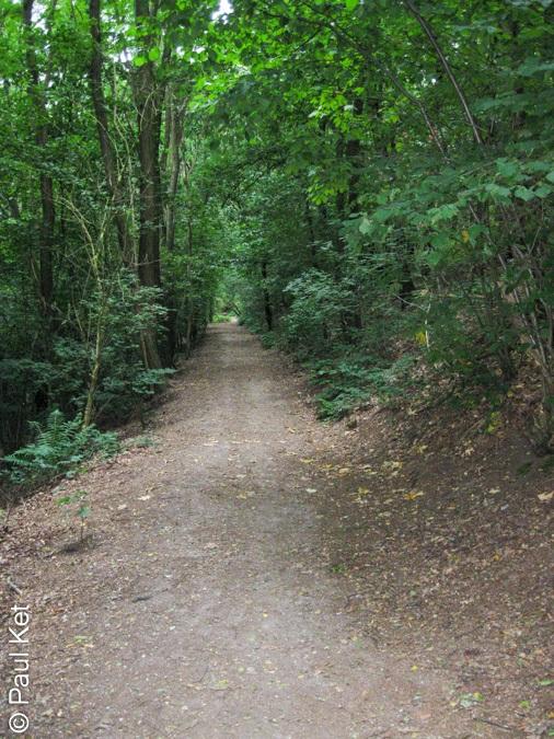 "Taken at Latitude/Longitude:51.545580/6.521189. 1.60 km North-West Saalhoff North Rhine-Westphalia Germany <a href=""http://www.geonames.org/maps/google_51.545580_6.521189.html""> (Map link)</a>"
