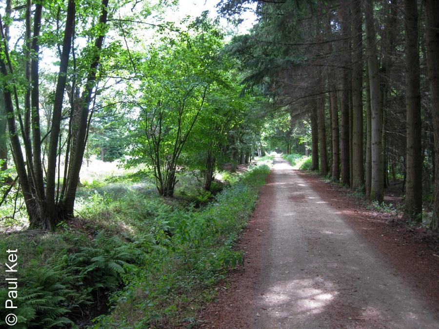 "Taken at Latitude/Longitude:51.225555/6.113888. 1.95 km East Meerlebroek Limburg Netherlands <a href=""http://www.geonames.org/maps/google_51.225555_6.113888.html""> (Map link)</a>"