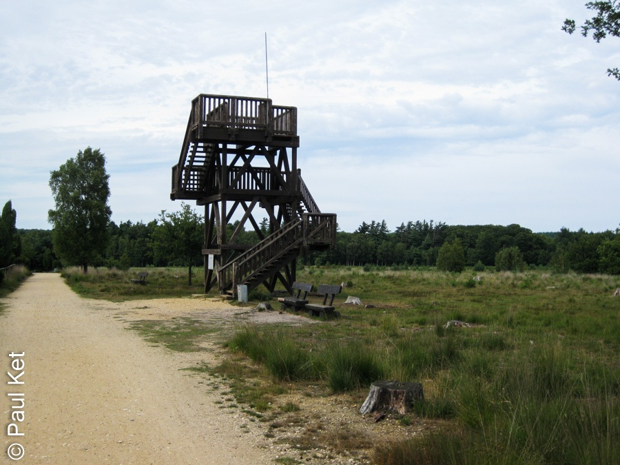 "Taken at Latitude/Longitude:51.235326/6.142665. 1.95 km East Meerlebroek Limburg Netherlands <a href=""http://www.geonames.org/maps/google_51.235326_6.142665.html""> (Map link)</a>"