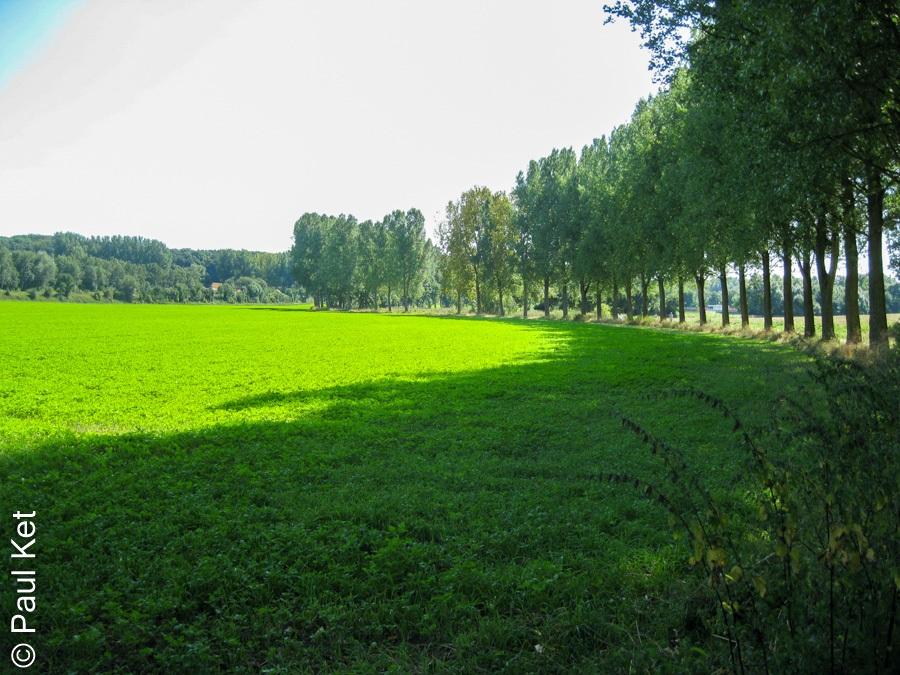 "Taken at Latitude/Longitude:50.922989/6.093487. 0.84 km North-West Bersitten North Rhine-Westphalia Germany <a href=""http://www.geonames.org/maps/google_50.922989_6.093487.html""> (Map link)</a>"