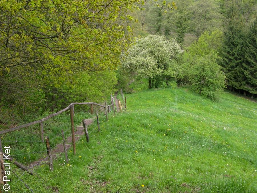 "Taken at Latitude/Longitude:50.707508/6.181811. 0.84 km North Walheim North Rhine-Westphalia Germany <a href=""http://www.geonames.org/maps/google_50.707508_6.181811.html""> (Map link)</a>"