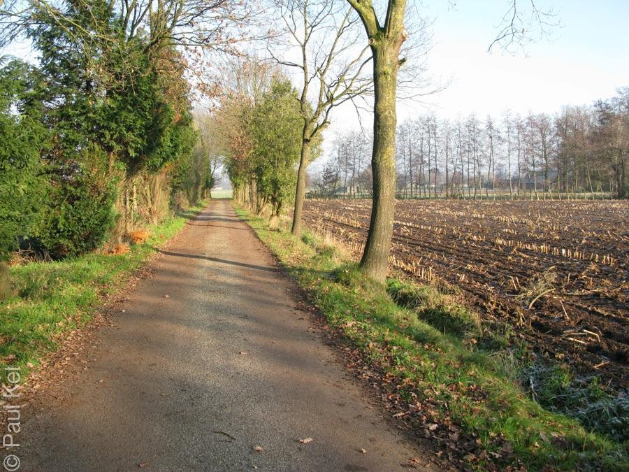 "Taken at Latitude/Longitude:52.124237/5.525974. 1.38 km East De Glind Gelderland Netherlands <a href=""http://www.geonames.org/maps/google_52.124237_5.525974.html""> (Map link)</a>"