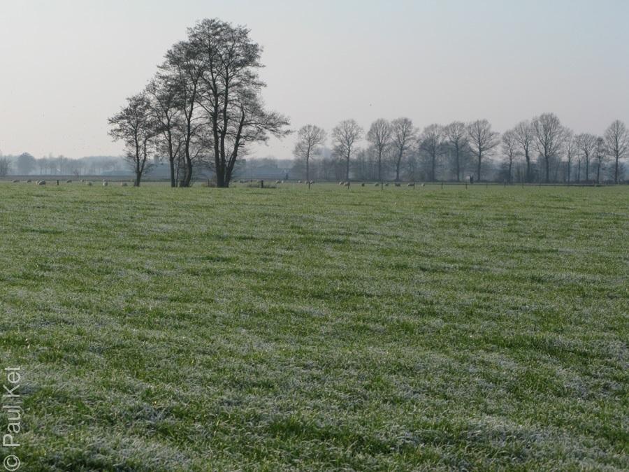 "Taken at Latitude/Longitude:52.127925/5.531022. 1.87 km East De Glind Gelderland Netherlands <a href=""http://www.geonames.org/maps/google_52.127925_5.531022.html""> (Map link)</a>"