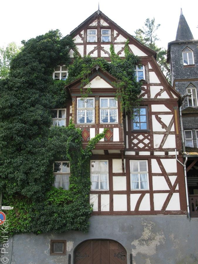 "Taken at Latitude/Longitude:50.234442/7.580092. 0.26 km West Filsen Rhineland-Palatinate Germany <a href=""http://www.geonames.org/maps/google_50.234442_7.580092.html""> (Map link)</a>"