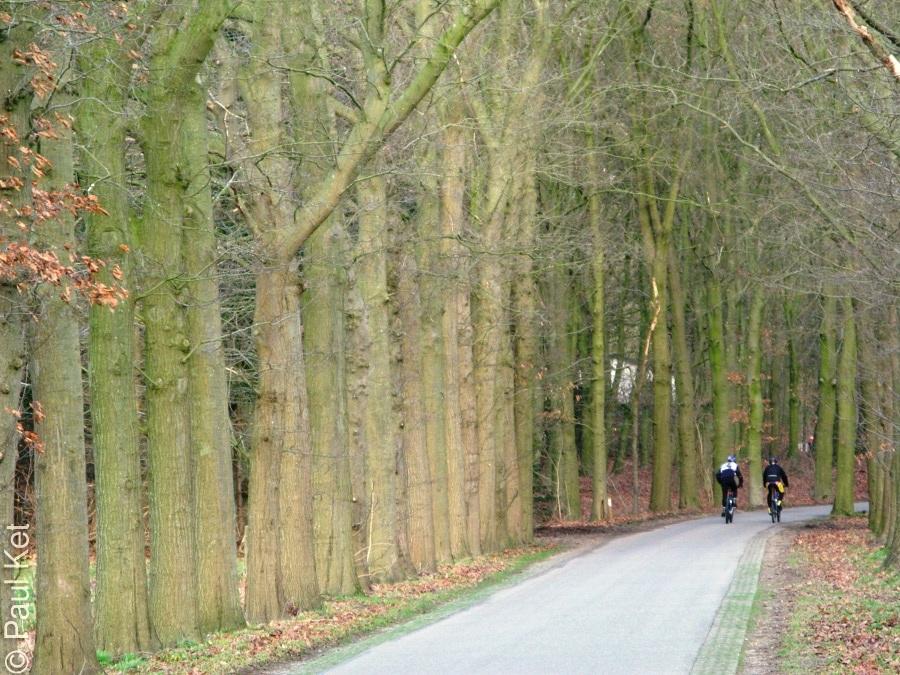 "Taken at Latitude/Longitude:52.029005/5.367351. 1.56 km East Doorn Utrecht Netherlands <a href=""http://www.geonames.org/maps/google_52.029005_5.367351.html""> (Map link)</a>"