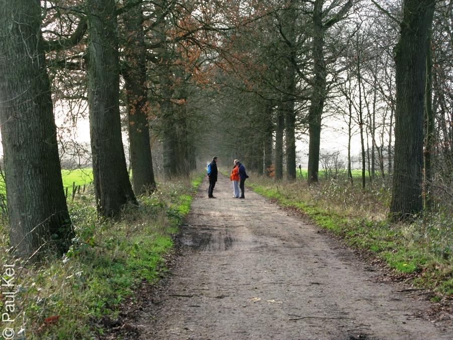 "Taken at Latitude/Longitude:52.017687/5.367822. 1.64 km West Darthuizen Utrecht Netherlands <a href=""http://www.geonames.org/maps/google_52.017687_5.367822.html""> (Map link)</a>"