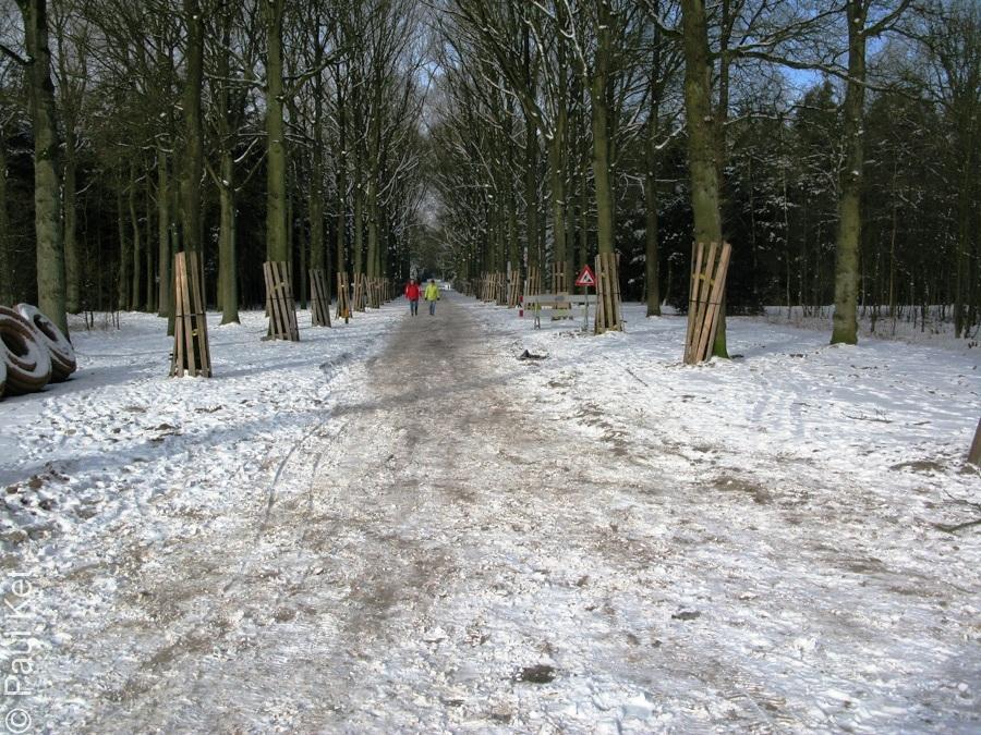 "Taken at Latitude/Longitude:52.213000/5.270399. 1.17 km West Baarn Utrecht Netherlands <a href=""http://www.geonames.org/maps/google_52.213000_5.270399.html""> (Map link)</a>"