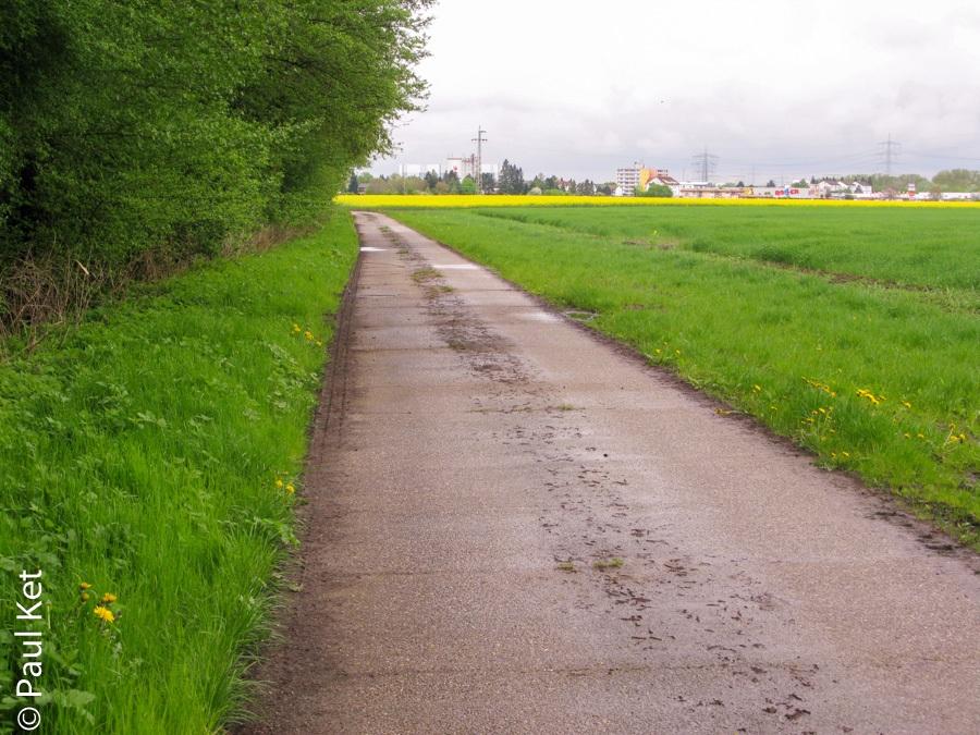 "Taken at Latitude/Longitude:49.689983/8.477370. 1.36 km East Biblis Hesse Germany <a href=""http://www.geonames.org/maps/google_49.689983_8.477370.html""> (Map link)</a>"